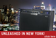 Spider Valve in New York